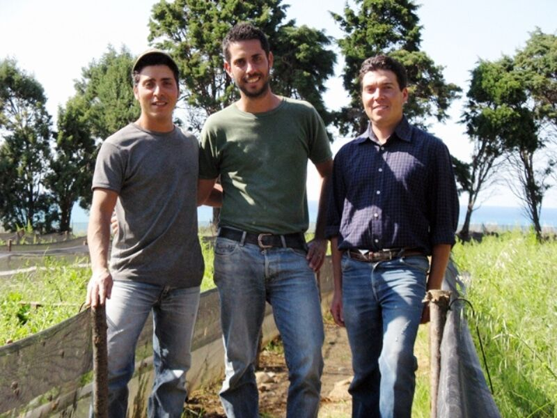 Da sinistra: Michele Sansone, Giuseppe Sansone, Davide Merlino