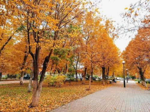 Un parco ad Astrakhan